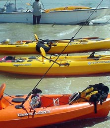Everglades Area Tours - Guided Kayak and Canoe Eco-Tours