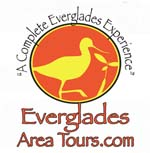 Everglades birding and photography tours
